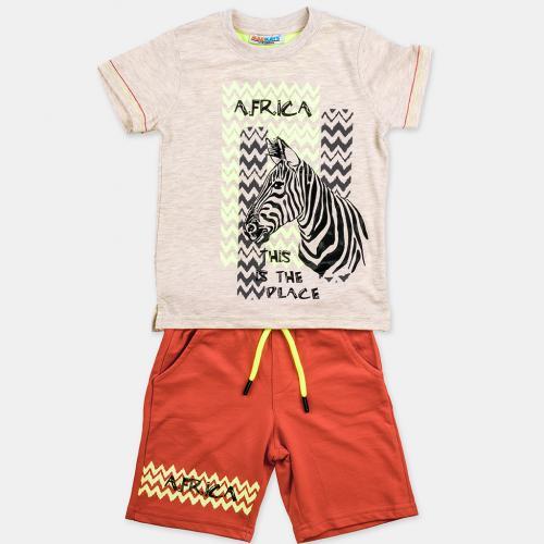 Комплект Zebra